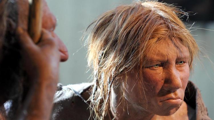 Kızıl saç Neandertallerde yaygın olabilirdi (Credit: Dpa picture alliance archive)