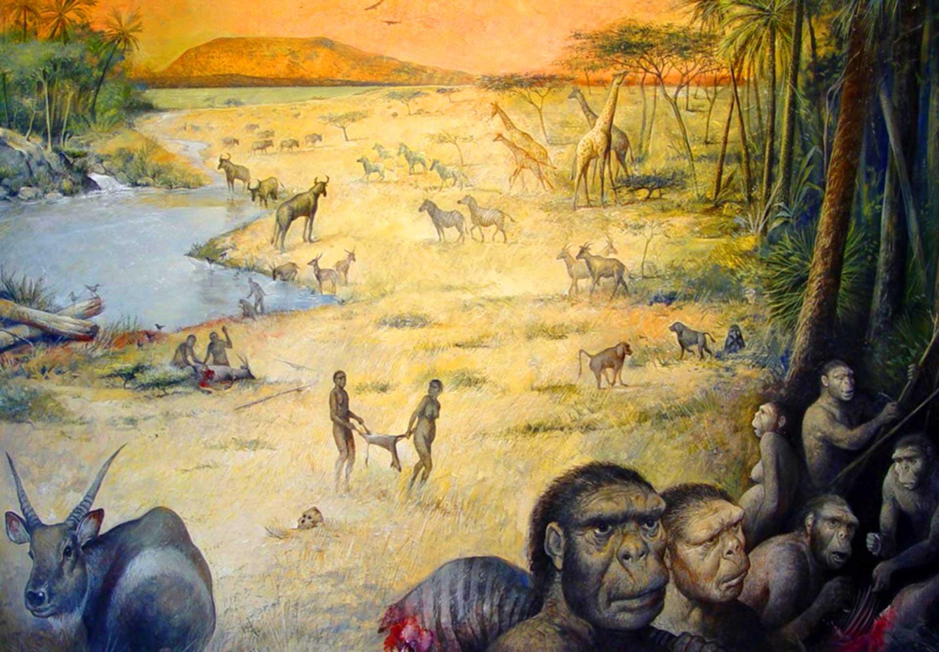 Bilimciler 1,8 milyon yıl önce erken insan habitatının nasıl olduğunu ilk kez ortaya çıkardı. Credit: Olduvai Paleoantropoloji ve Paleoekoloji Projesi aracılığıyla M.Lopez-Herrera Ve Enrique Baquedano.