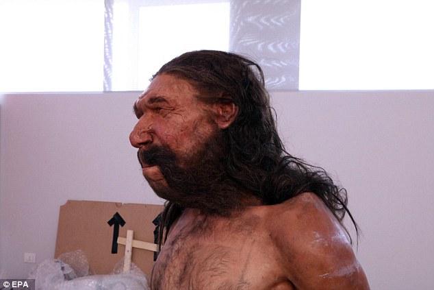 İtalya'daki Altamura Neandertali'nin Yüzü Canlandırıldı