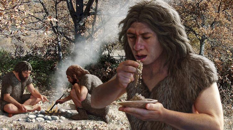 Neandertallerin Fiziksel Farklılıklarına Yedikleri Neden Olmuş