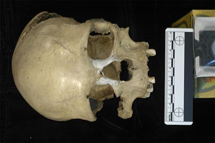 Pestera Muierii kadının mitogenomunun tamamı elde edildi. F: E. Trinkaus and A. Soficaru