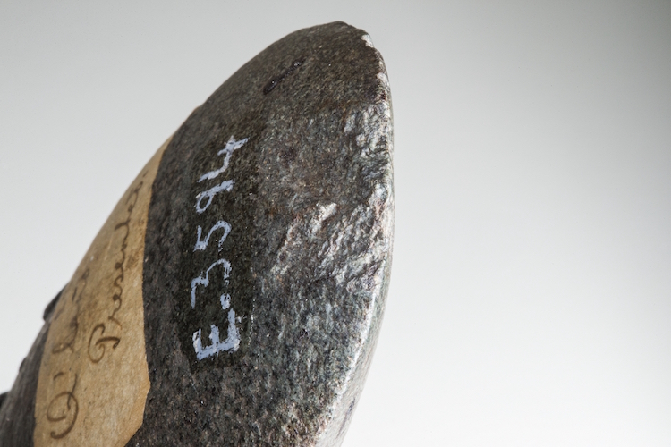 An example of a hafted axe similar to the one the unearthed flakes would have come from. Credit: Stuart Hay, ANU.