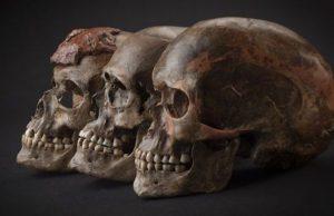 Buzul çağında Avrupa'da yaşayan nüfustaki Neandertal genleri zaman içinde azaldı.