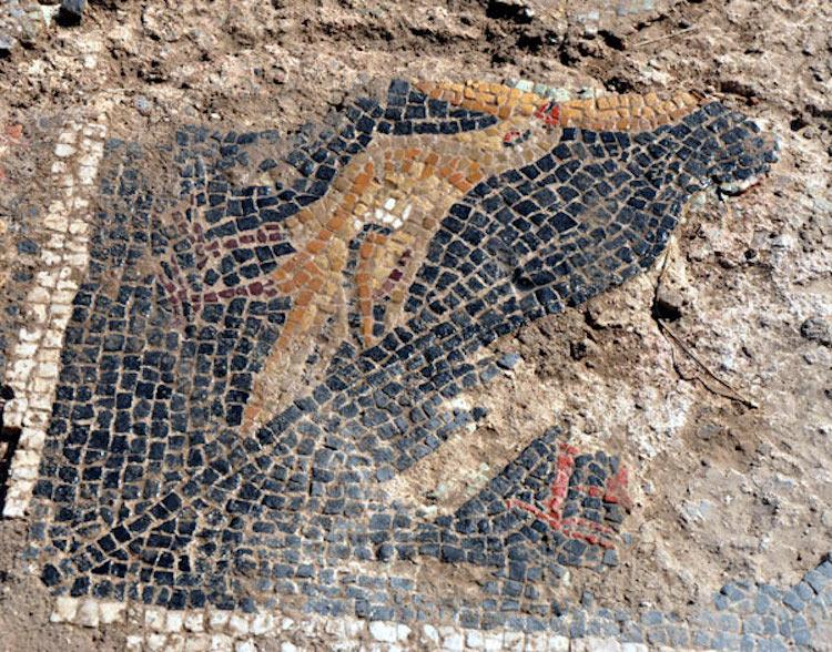 Kırıkkale'deki tarlada roma dönemi mozaiği bulundu.