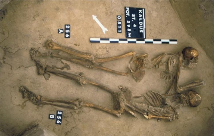 """Kaldus'taki Sit 4'te bulunan """"Vampir karşıtı"""" mezar 256/01. Soldaki kadın ve sağdaki erkeğin başları kesilerek yan pozisyonda aynı mezara gömülmüşler."""