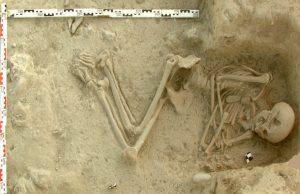 Avrupa'nın ilk tarımcıları Ege'den göç etti