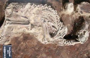 2 bin yıllık köpek mezarlığı