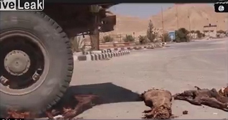 IŞİD'in Palmira'daki Mumyaları Ezdiği Görüntüler Ortaya Çıktı