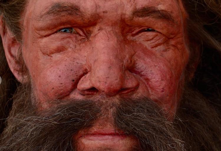 Tükenmeden Önce Neandertal Nüfusunda Patlama Yaşanmış