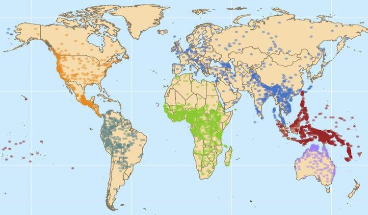Bu çalışmada incelenen 6452 kelimenin coğrafi dağılımı. Renkler farklı dilsel bölgeleri birbirinden ayırıyor, bölgeler arasında dilsel olarak bağlantı yok veya çok az ama nüfuslar arasında etkileşim oldukça fazla. F: Damián E. Blasi et al