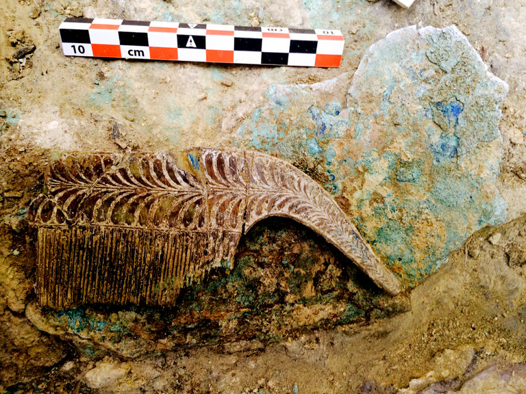 Antik yunan savaşçısının mezarında bulunan fildişi tarak. Department of Classics / University of Cincinnati