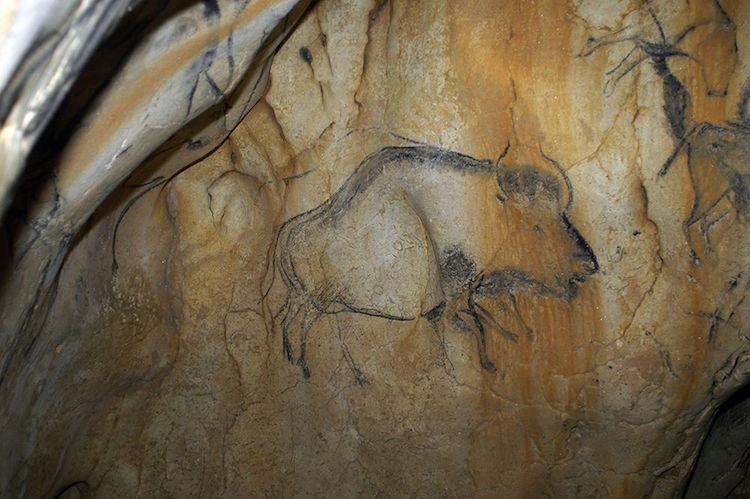 15.000 Yıllık Mağara Resimleri Sayesinde Yeni Bir Bizon Türü Keşfedildi