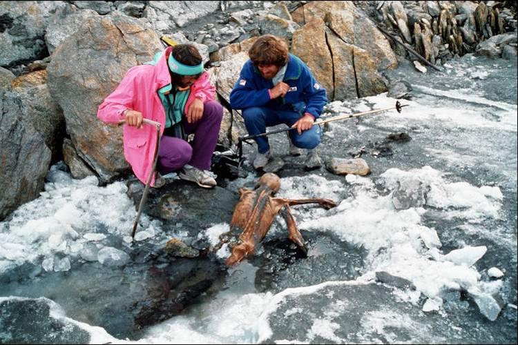 Buzadam Ötzi Eski Bir Düşmanı Tarafından Sinsice Öldürülmüş