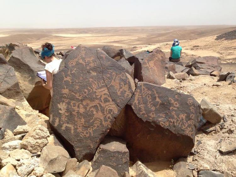 Jebel Qurma bölgesinde bulunan bir petroglif örneği F: Peter Akkerman / Jebel Qurma Arkeolojik Çevre Projesi