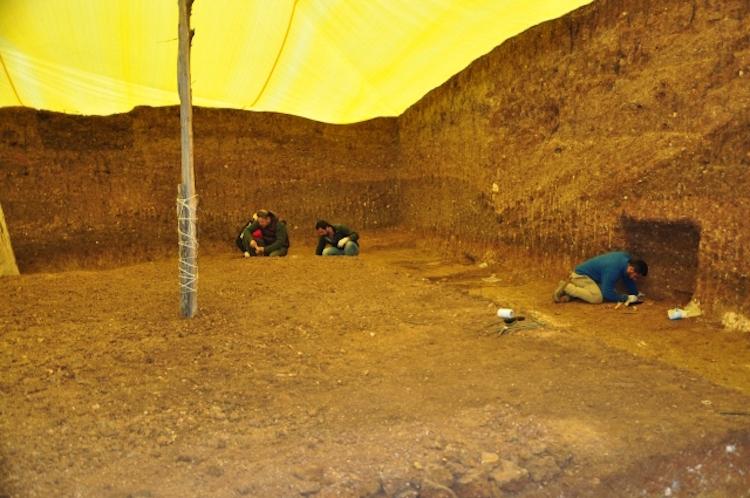Kastamonu'da 3500 Yıllık Bir Kurganda 24 İskelet Çıktı