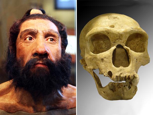 neanderthal01