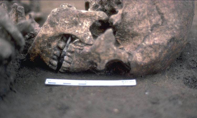 2017 ocak ayı arkeolojik keşifler