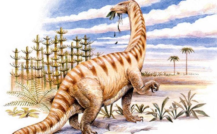 Lufengosaurus türü bir dinozor kemiğinde 195 milyon yıllık antik protein bulundu.