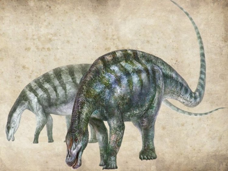 New type of dinosaur found - image din1 on https://archaeologys.com