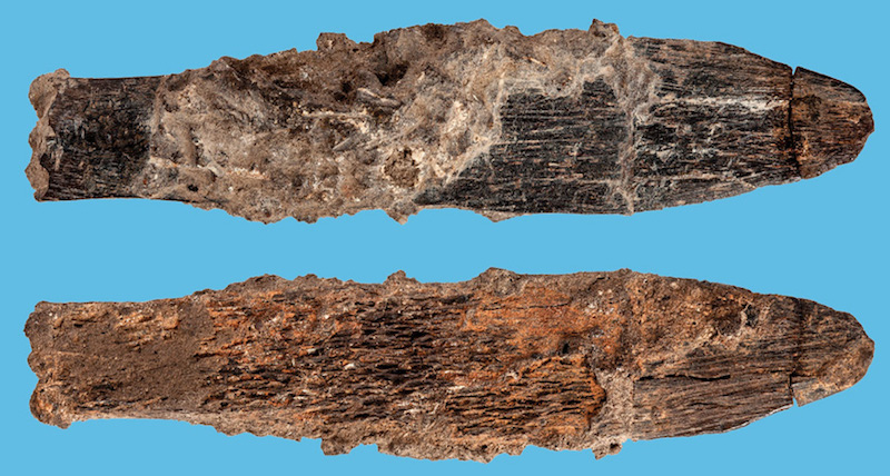 Africa's First Expert Tool 90,000 Annual Knife - image knife on https://archaeologys.com
