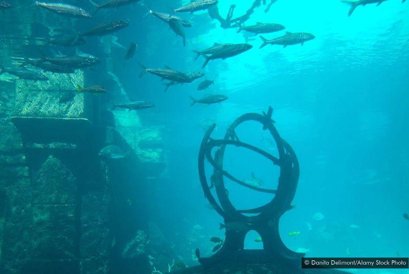 Atlantis Tarzı Efsanelerin Bazıları Gerçekten Yaşandı | Arkeofili