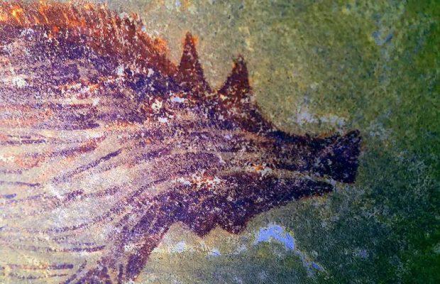 Endonezya'da Dünyanın En Eski Hayvan Resmi Keşfedildi